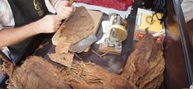 Κουβανέζος δείχνει την τέχνη να φτιάξεις πούρο – Βίντεο