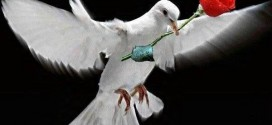 Αλλαγές στην αυτοδιοίκηση για… ειρήνη!
