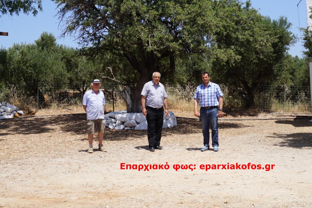 eparxiakofos.gr_image0060