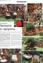 ΑΠΟ ΤΟΝ ΔΗΜΟ ΧΑΝΙΩΝ:    Το 1ο βραβείο για κήπο με πέτρα και πράσινο