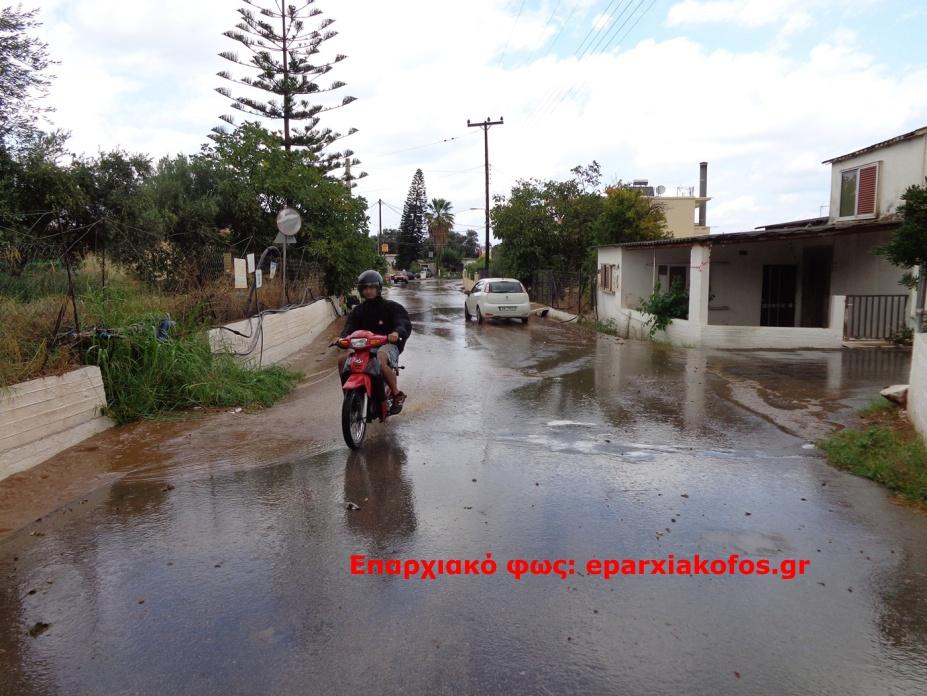 eparxiakofos.gr_image0098