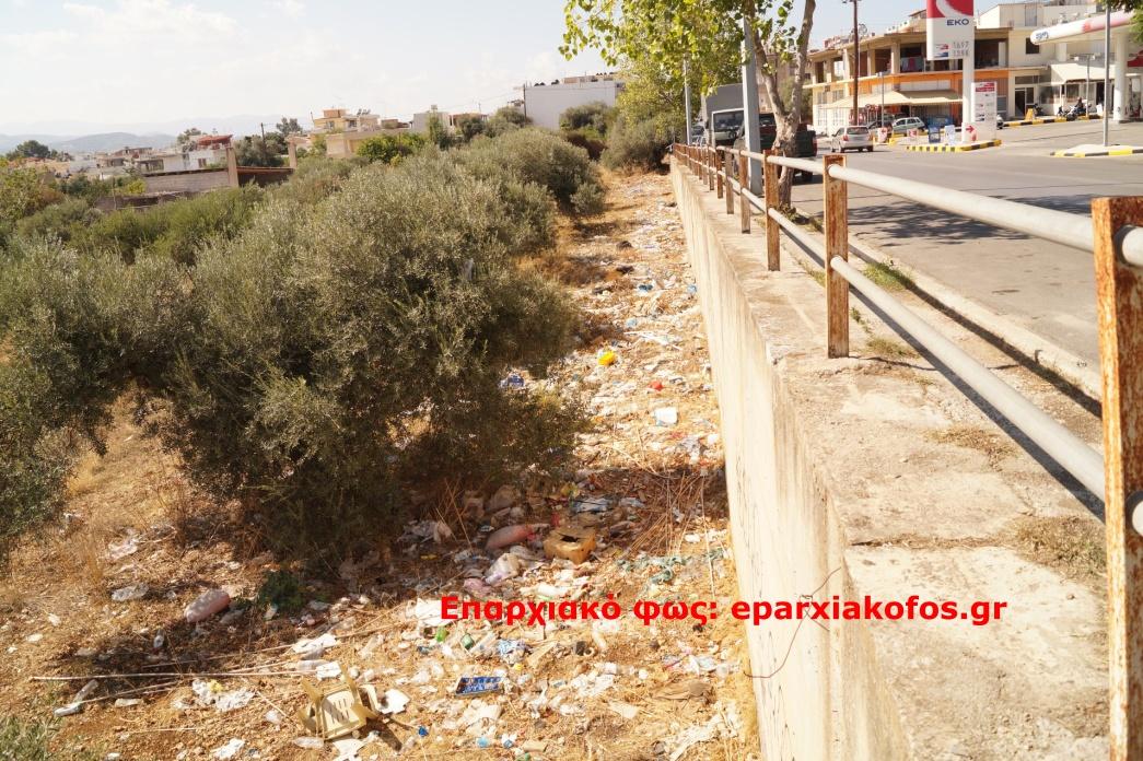 eparxiakofos.gr_image0007