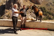 Το μοναδικό ήμερο Κρι Κρι στο φαράγγι Τοπολίων- Κατσοματάδω