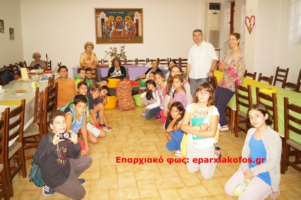 eparxiakofos.gr_image0151