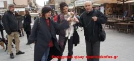 Φωνή διαμαρτυρίας από φιλόζωους στα Χανιά ( Και βίντεο)