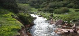 Όταν υπερχειλίζουν τα ποτάμια ή  καταντούν ρυάκια…!