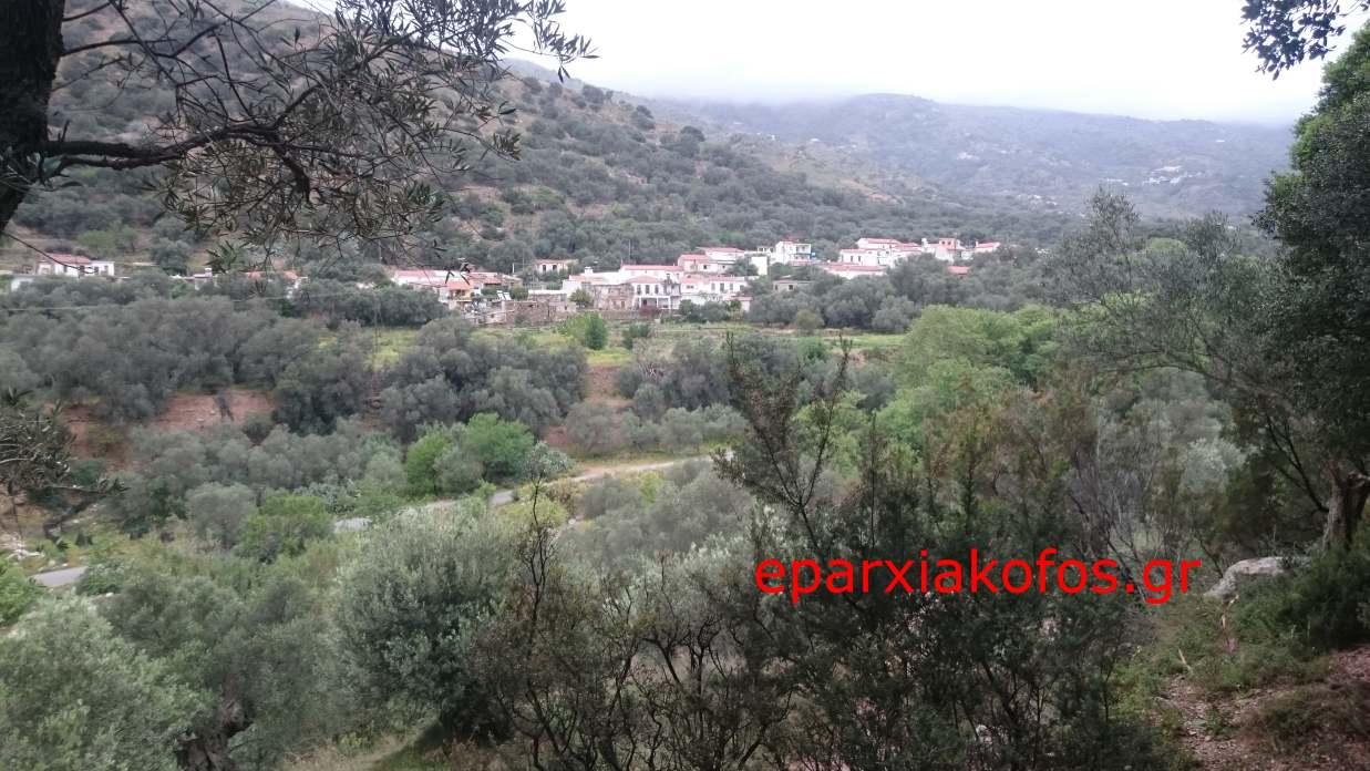 eparxiakofos.gr_image0073