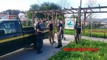 Εθελοντές και Δήμος φύτεψαν δένδρα σε πλατεία της Αγιάς (Και βίντεο)