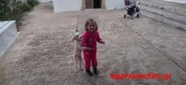 Η μικρή Έλενα στέλνει μηνύματα για όσους κακοποιούν σκυλάκια