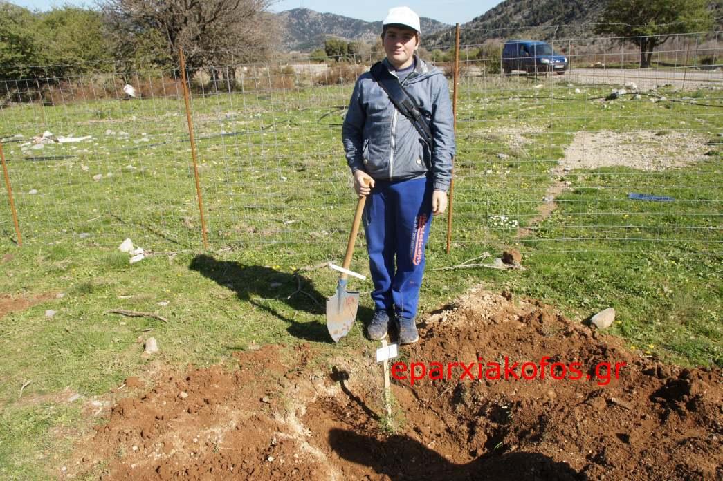 eparxiakofos.gr_image0145