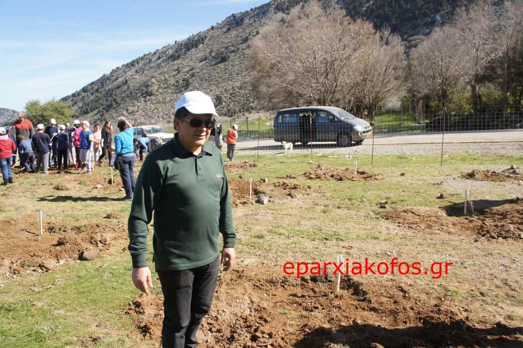 eparxiakofos.gr_image0149