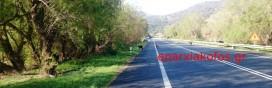 Στιγμιότυπο με κατσίκες στην εθνική οδό