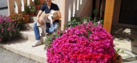 Άνοιξη με λουλούδια και ευωδιές