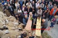 Πανηγύρισε το εξωκλήσι του Αγίου Γεωργίου στο Αργυρομούρι Εξώπολης  κι ευλογήθηκαν τα πρόβατα (Και βίντεο)