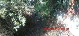 Ξεχασμένο το ρέμα στην περιοχή Παρηγοριά στα Χανιά