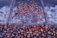 ΣΤΟ ΕΛΟΣ ΚΙΣΑΜΟΥ – Εκατοντάδες επισκέπτες στην εορταστική εκδήλωση για το κάστανο