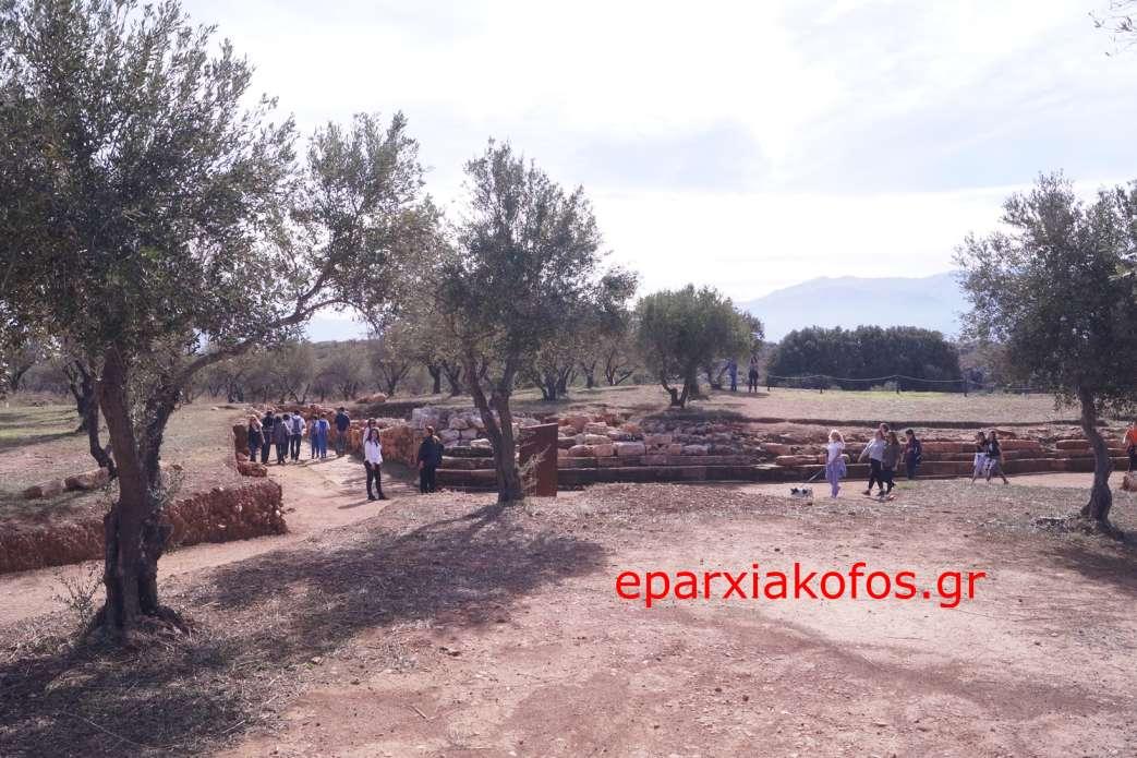 eparxiakofos0090