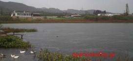Η βροχή γέμισε με νερό τις λίμνες