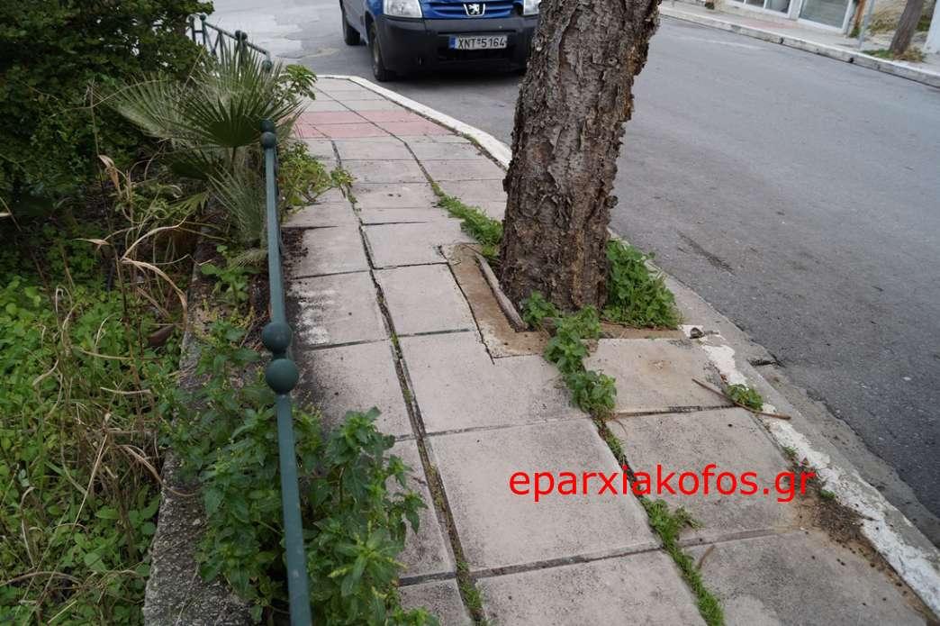 eparxiakofos0004