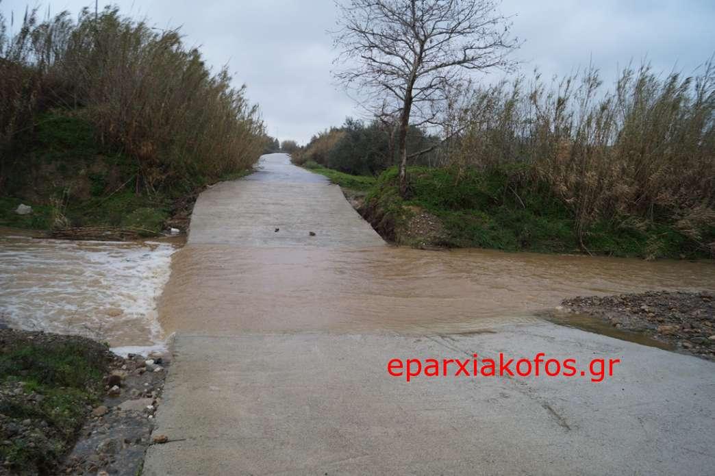eparxiakofos0143