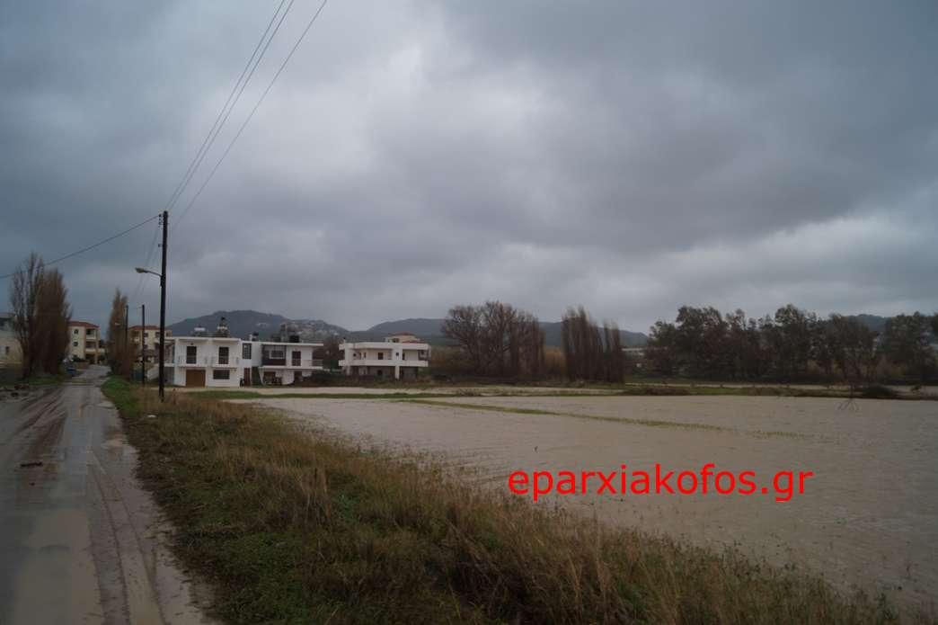 eparxiakofos0149