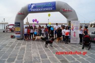 Περίπατος με τα ζώα συντροφιάς στο λιμάνι Χανίων