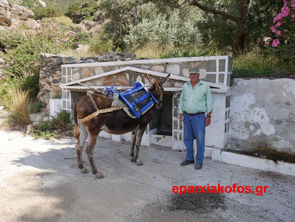18. Ο αγρότης της Σίφνου με το γαϊδουράκι του wtmk