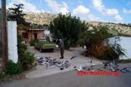 ΣΤΟΝ  ΔΗΜΟ ΑΠΟΚΟΡΩΝΟΥ- Γνωριμία με τον οικισμό Φαράγγι στον Αποκόρωνα