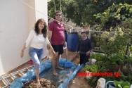Παραδοσιακό πάτημα σταφυλιών μέσα στα Χανιά