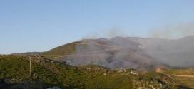 Κρανίου τόπος η καταπράσινη βουνοπλαγιά της Σπίνα Σελίνου (Και βίντεο)