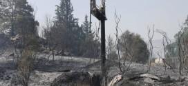 ΣΤΙΣ ΒΡΥΣΕΣ ΑΠΟΚΟΡΩΝΟΥ –  Η μεγαλύτερη καταστροφή από πυρκαγιά στην Κρήτη