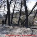Ανυπολόγιστη η καταστροφή από την πύρινη λαίλαπα στον Αποκόρωνα (Και βίντεο)
