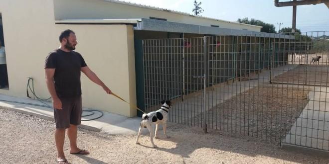 Ένα χωριό φιλοξενίας και εκπαίδευσης σκύλων