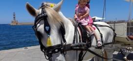 Από μικρά διδάσκονται ν' αγαπούν τα ζώα
