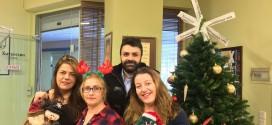 Το φετινό Χριστουγεννιάτικο δένδρο της εφημερίδας «Χανιώτικα νέα»