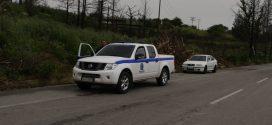 Δυνατός αέρας έριξε κορμούς δένδρων στην εθνική οδό Χανίων – Ρεθύμνου