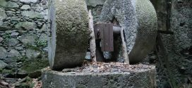 ΣΤΟΝ ΠΡΑΣΕ – Ένας παλιός νερόμυλος στο έλεος του χρόνου (Και βίντεο)