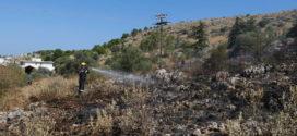 Σε κινητοποίηση η Πυροσβεστική από πυρκαγιά στο άλσος του Αγίου Ιωάννη