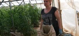 Καταστροφές από άσχημες καιρικές συνθήκες στην Κουντούρα Σελίνου Χανίων
