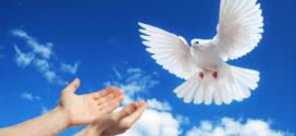 """Περικυκλωμένη αντιστέκεται δυναμικά η """"Ειρήνη"""""""