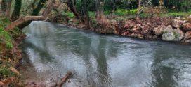 Στον ποταμό Κοιλιάρη τον Γενάρη