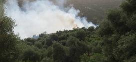 Πύρινες φλόγες από διάφορες εστίες απειλούν γειτονιές του Κακοδικίου