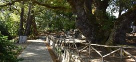 """Φθινοπωρινή """"απόδραση"""" στον Πλάτανο του Βλάτους της ορεινής ενδοχώρας της Κισάμου"""